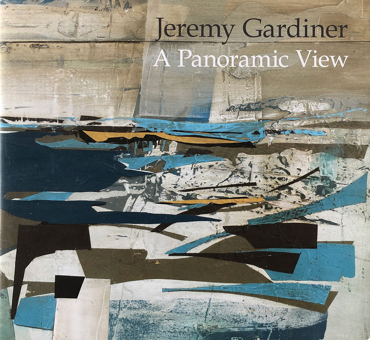 The book cover of A Panoramic View by Jeremy Gardiner
